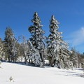 - Tumalo Mountain Snowshoe