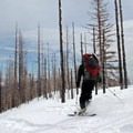 Touring skis provide the quickest option for descending the trail.- Cooper Spur Shelter via Tilly Jane Trail