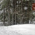 The Tilly Jane Trailhead from the parking lot.- Cooper Spur Shelter via Tilly Jane Trail