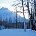 The mountain grows larger as you continue your ascent.- Cooper Spur Shelter via Tilly Jane Trail