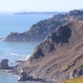 The view north from the Coastal Trail, Marine Headlands. - Marin Headlands + Golden Gate Recreation Area