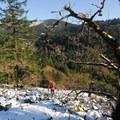 Trail beginning through talus field and oregon white oaks.- Spirit Falls Hike