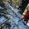 Spirit Falls Hike.- Spirit Falls Hike