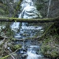Sweeny Falls and Souther Creek.- Sweeny Falls