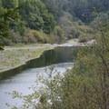Gualala River.- Gualala River Redwood Park
