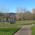 Off-leash dog area at the Sellwood Riverfront Park- Sellwood Riverfront Park