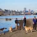 Beach along the Sellwood Riverfront Park- Sellwood Riverfront Park