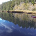 - Albion Tidal River