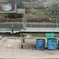 Fish cleaning station within the campground.- Albion River Campground
