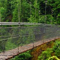 Suspension bridge over Lava Canyon.- Mount St. Helens National Volcanic Monument