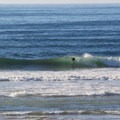 North Salmon Creek is the most popular surf spot along the Sonoma Coast.- North Salmon Creek