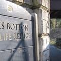 Oaks Bottom Wildlife Refuge.- Oaks Bottom Wildlife Refuge