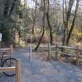 Oaks Bottom Wildlife Refuge is a great stop on longer bike rides.- Oaks Bottom Wildlife Refuge