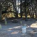 A typical campsite.- Bodega Dunes Campground