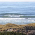 Section of South Salmon Creek Beach near Bodega Dunes Campground.- Bodega Dunes Campground