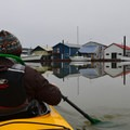 Kayaking on Scappoose Bay.- Scappoose Bay