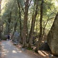 The paved lower section winds though oak, pine, and large granite boulders. - Vernal Falls Hike via Mist Trail