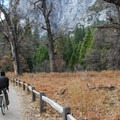 Heading west on the valley floor bike path near Yosemite Village.- Yosemite Valley Bicycle Loop