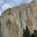 Biker's view of Upper Yosemite Falls.- Yosemite Valley Bicycle Loop