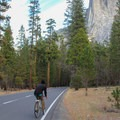 Heading east along Southside Drive.- Yosemite Valley Bicycle Loop