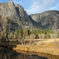 Upper Yosemite Falls, Sentinel Meadow and the Merced River share the autum afternoon light.- Yosemite Valley Bicycle Loop
