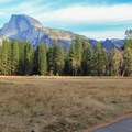 Riding through Cook Meadow with Half Dome above.- Yosemite Valley Bicycle Loop