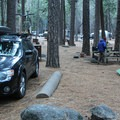 A typical site in Upper Pines Campground.- Upper Pines Campground