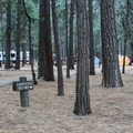 Upper Pines Campground consists of 238 campsites spread across six loops.- Upper Pines Campground