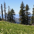 Grizzly Peak in the spring.- Grizzly Peak