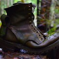 An old boot under the trestle bridge.- Upper Salmonberry River Trail