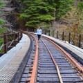 Trestle bridge on the Upper Salmonberry River Trail.- Upper Salmonberry River Trail