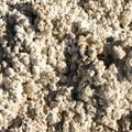 Salty soil at Mickey Hot Springs.- Mickey Hot Springs