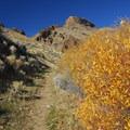 Pike Creek Mine hiking trail.- Pike Creek Mine Hike