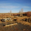 Typical campsite at Fish Lake Campground.- Fish Lake Recreation Site Campground