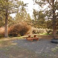 A typical campsite at Page Springs Campground.- Page Springs Campground