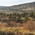 View from the Donner und Blitzen trailhead.- Donner und Blitzen River Trail Hike