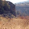 Donner und Blitzen Gorge.- Donner und Blitzen River Trail Hike
