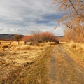 Dirt road leading to the P Ranch Long Barn.- P Ranch Long Barn