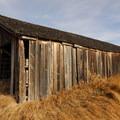 P Ranch Long Barn.- P Ranch Long Barn
