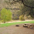 A typical campsite at Big Bend Recreation Site.- Big Bend Recreation Site