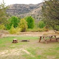 A typical campsite at Lone Pine Recreation Site.- Lone Pine Recreation Site