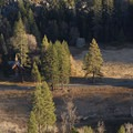 Columbia Rock Hike: View of Yosemite Valley Chapel.- Columbia Rock Hike