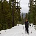 Skiing in to Bechtel Shelter.- Bechtel Shelter