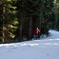 Climbing back up the road from Gold Lake.- Gold Lake Shelter
