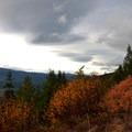 Fall colors surrounding the Green Ridge Lookout.- Green Ridge Lookout