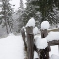 Fence near Hall House.- Fish Lake Remount Depot
