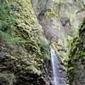 Cabin Creek Falls.- Starvation Ridge Waterfall Loop Hike