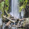 Henline Falls cascade over a log jam, creating a calm pool.- Henline Falls