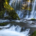 Sun dancing on the waterfall.- Panther Creek Falls