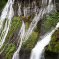 Panther Creek Falls.- Panther Creek Falls